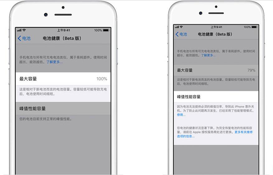 如何在iOS 11.3中检查电池健康并禁用降频的照片 - 3