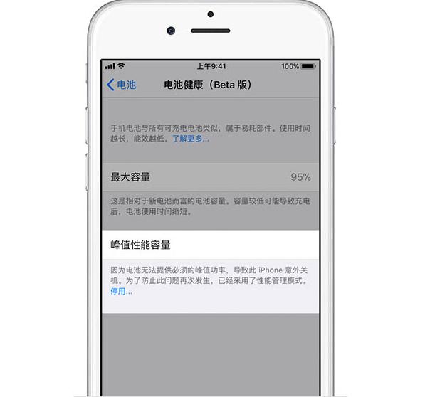 如何在iOS 11.3中检查电池健康并禁用降频的照片 - 4