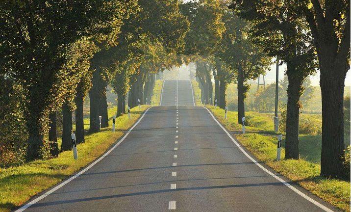 美文丨一段路,四季景,一颗心