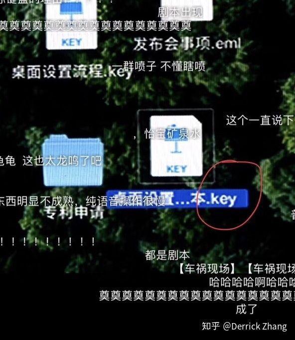 锤子革命新品惊现苹果系统 官方这样解释的照片 - 2