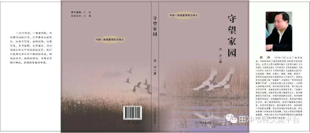 田冲诗集《守望家园》出版