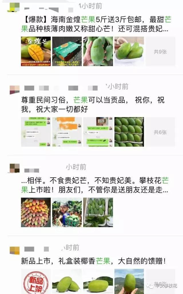 攀枝花芒果网:为什么这么多人卖攀枝花芒果?