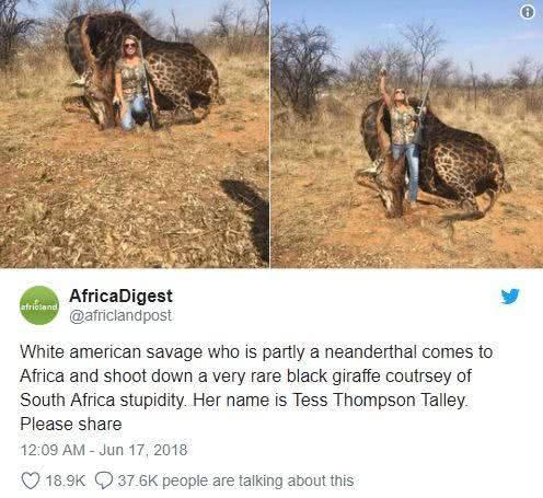美女猎杀长颈鹿引发了众怒