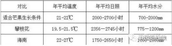 攀枝花芒果网:攀枝花芒果为什么比海南、广西的芒果更香甜?