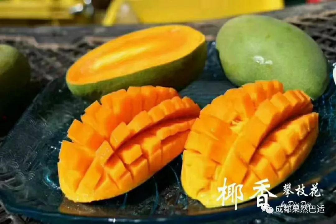 攀枝花芒果网:攀枝花阳光芒果,让你甜到心坎里
