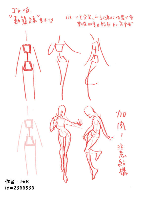 动漫人体的动态线讲解