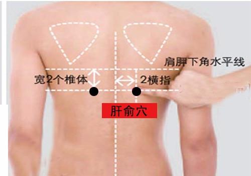 艾灸养肝的重要穴位图解,学会了自己在家就可以做。_元气