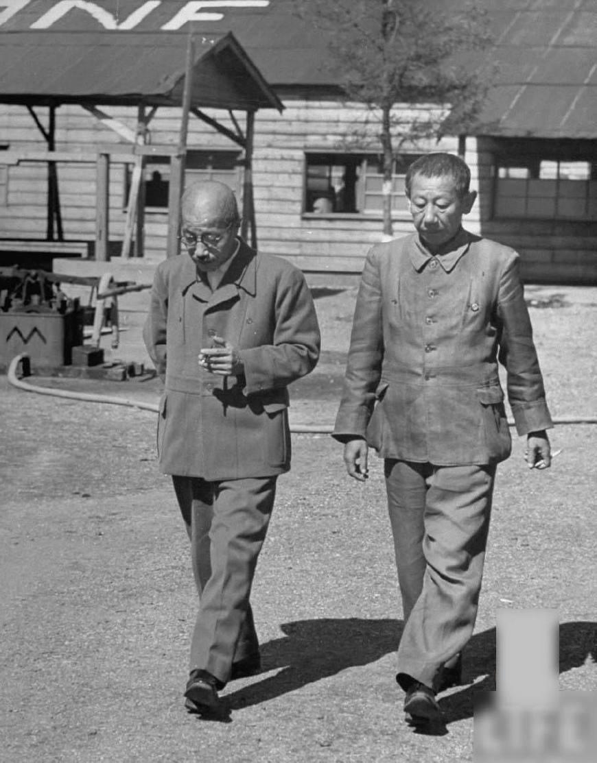 日本退伍老兵的战后生活,为何沦落街头乞讨?(图6)