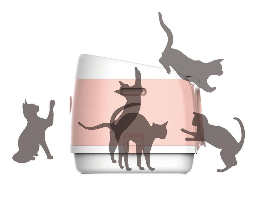 成立1年,年销数千万,看PAKEWAY如何打造综合宠物用品品牌?