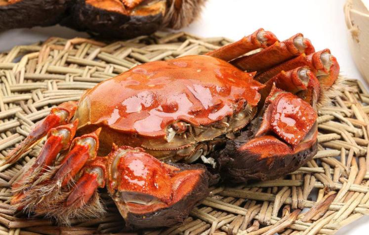 關于大閘蟹,有哪些你不知道的秘密?