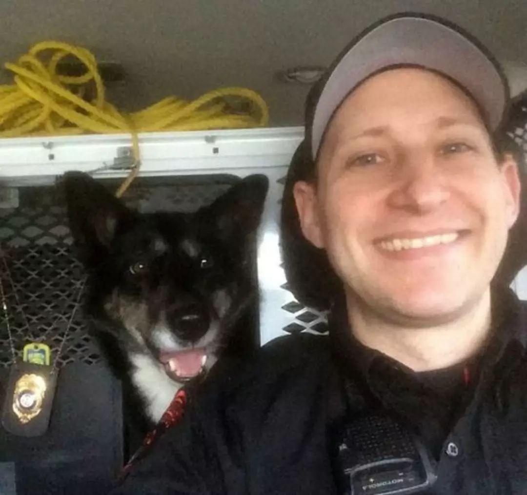 她8年前救助一只流浪狗,8年后狗狗变成警犬救了她的儿子!
