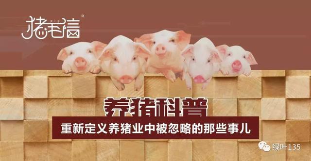【猪毛信】用泡方便面的道理看待消毒