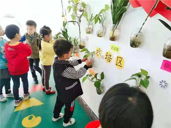 """""""我与绿色共成长""""__�D�D盱眙县黄花塘镇中心幼儿园植物角观赏活动"""