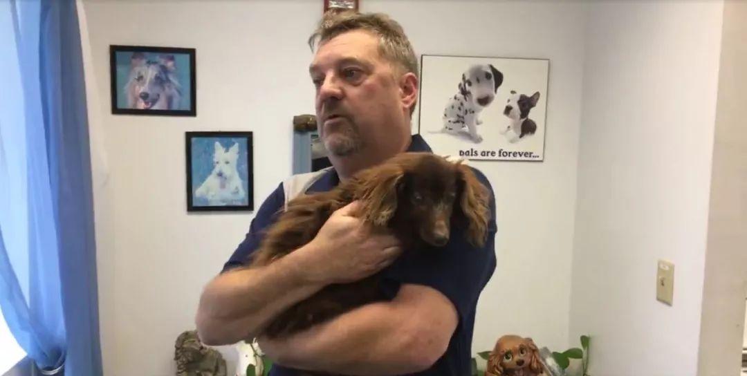 高龄聋盲狗狗离家5年后,与主人重逢,画面让人泪目