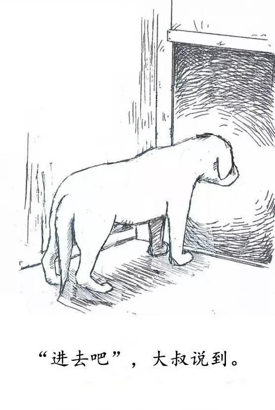 一只狗狗的独白:愿世上没有杀害!