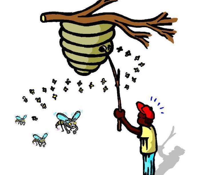 """网络推广全靠刷,还有谁家的""""马蜂窝""""是空巢?"""