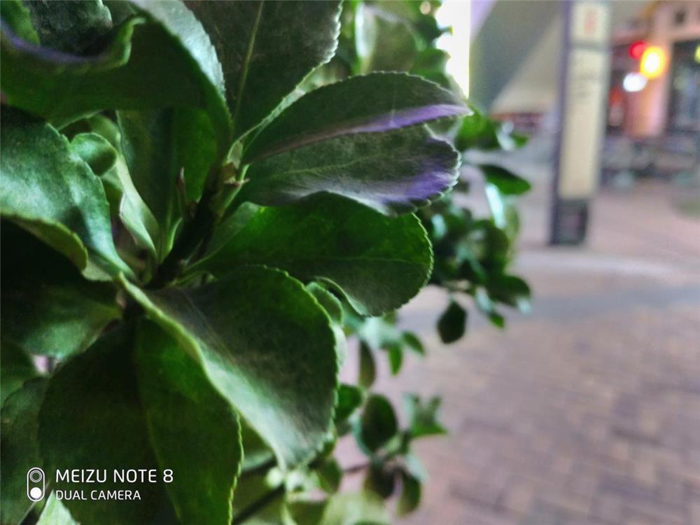 千元拍照新旗舰 魅族 Note8首发评测:兼顾设计性能的黑马的照片 - 25
