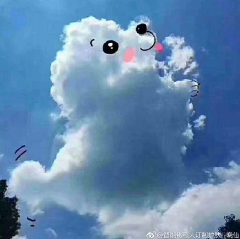 你知道吗?过世的狗狗们其实都化成了云朵……