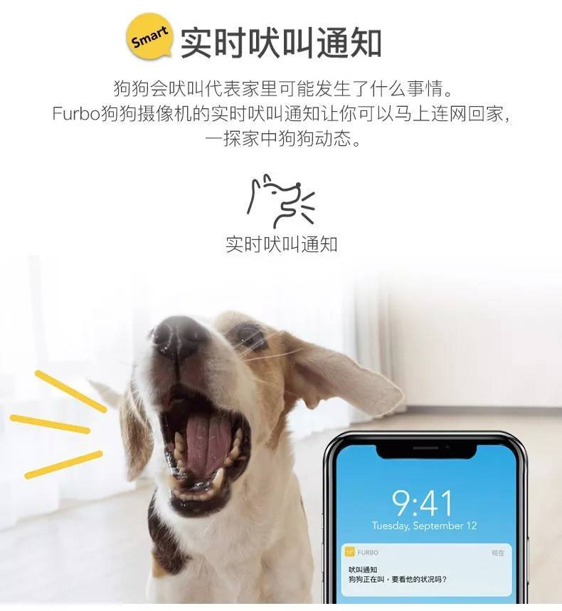全美亚马逊销售第一的宠物产品来了 Furbo要做AI武装的狗狗保姆