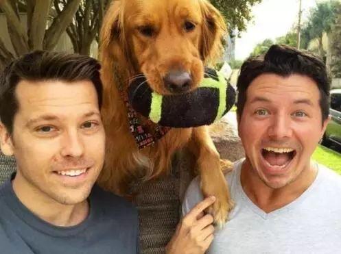 """演技很棒的狗狗,让路人捡玩具,一不小心就成为了""""网红"""""""