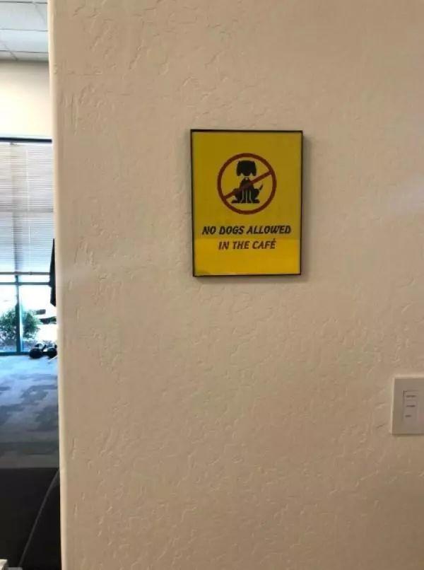 """看到""""禁止狗狗入内""""的标识,狗狗一屁股坐在地上"""