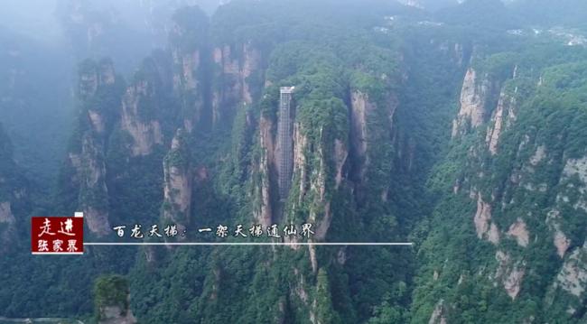 走进张家界:悬崖峭壁上的人工奇观——百龙天梯