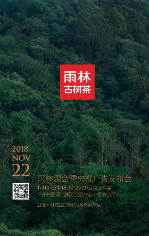 雨林古茶坊携手央视,呈现原始雨林大景观