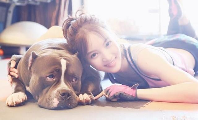 美女与恶霸犬在一起的画风!这些照片会圈粉吗?