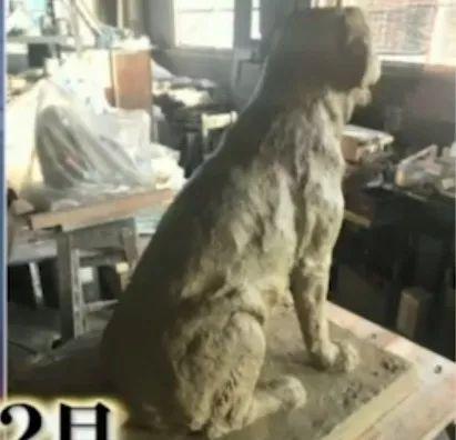 日本一条狗狗考警犬失败了6次,它去世后,粉丝建了一座铜像