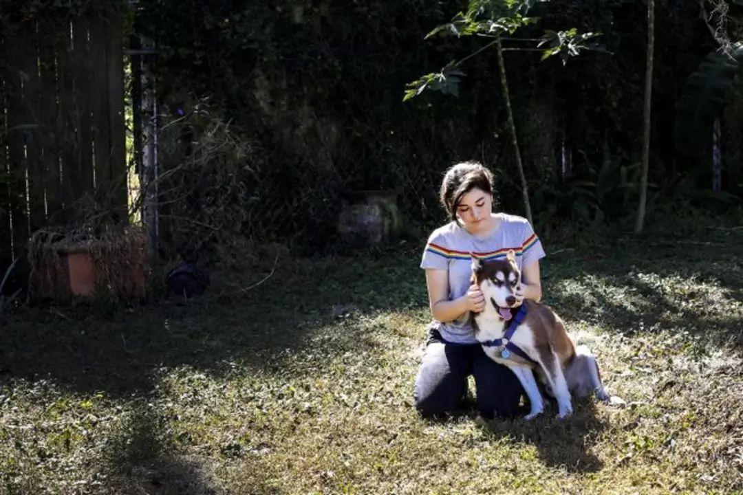 狗狗走失一年半,主人竟在2000公里外找到了它!