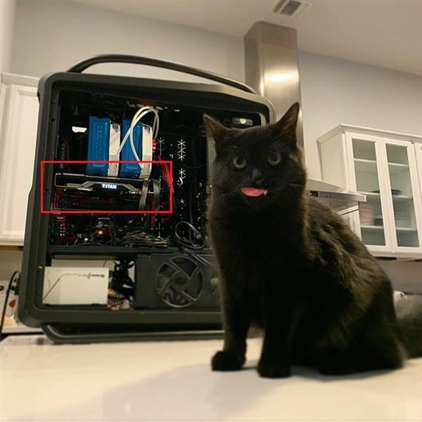 NVIDIA RTX Titan显卡首曝:真正满血图灵的照片 - 3