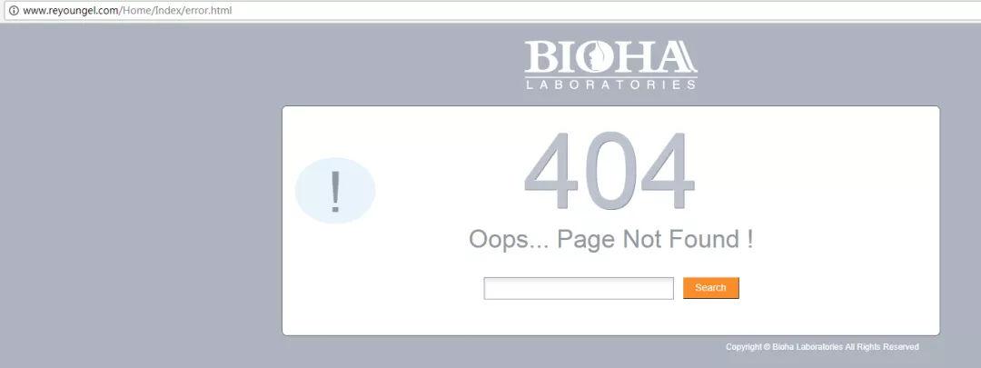 如何打造一个抢占Google首页排名的外贸网站-雪花新闻