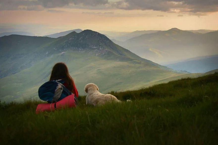 金毛跟随主人一起去旅行,他们在一起的画面总是那么的美