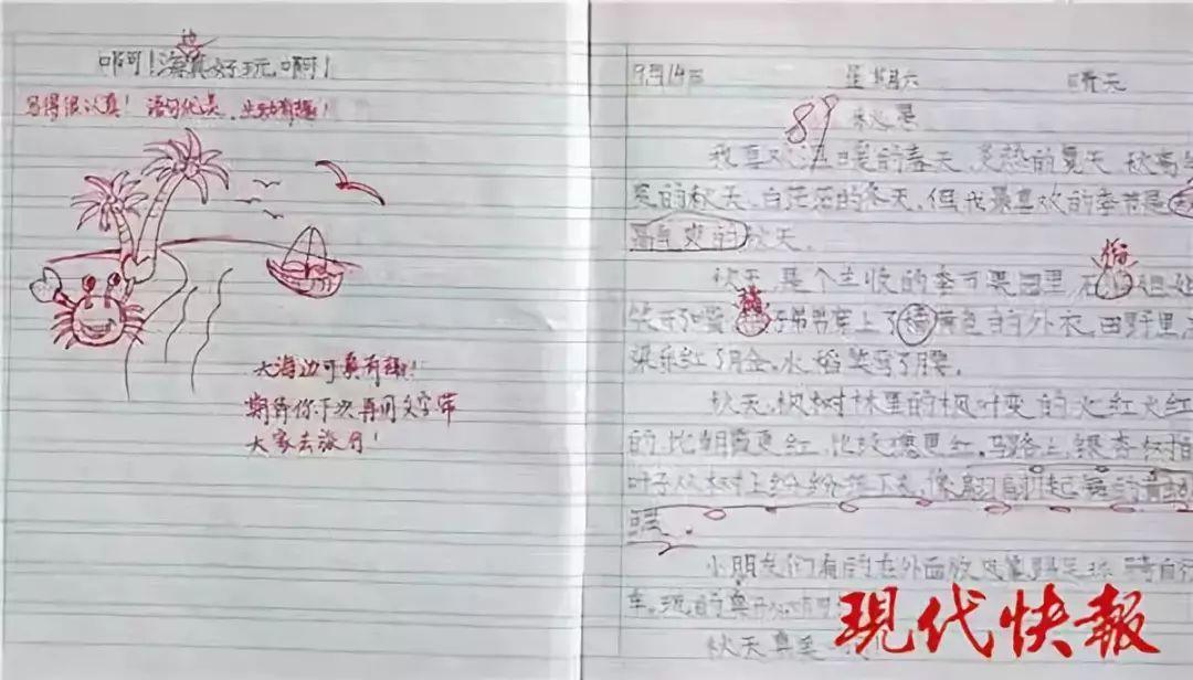 小学老师表情包评语走红,网友留言:我都想写作业了的照片 - 8