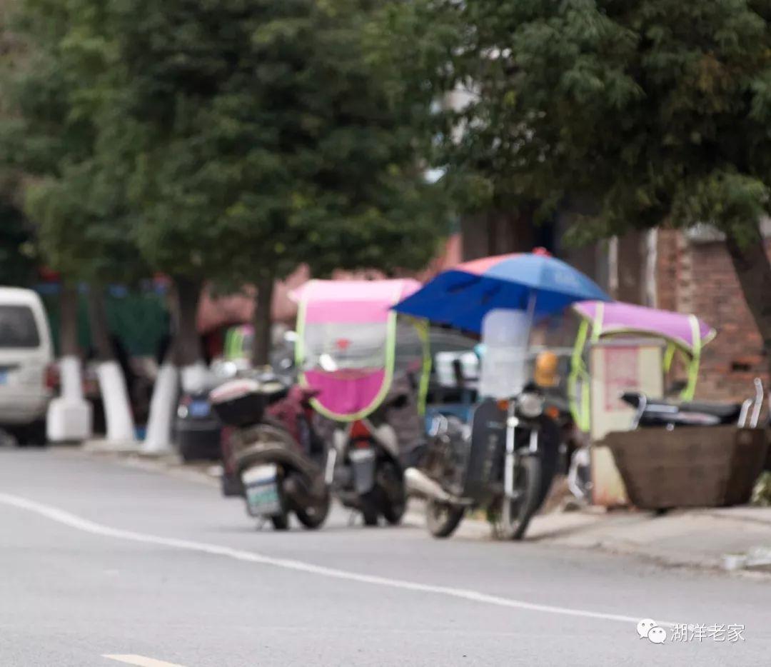 车祸猛于虎!交警部门将整治摩托车、电动车非法安装遮阳伞的行为-雪花新闻