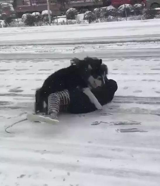 大冬天还要出去遛狗,是一种什么样的体验?