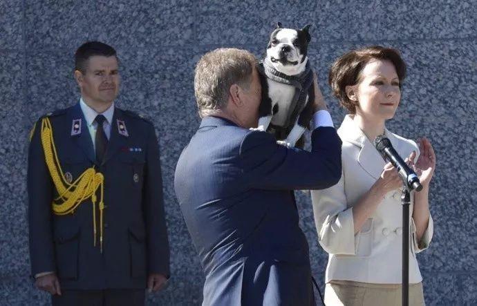 芬兰总统养了一只黏人的狗狗Lennu,还经常带着它去上班