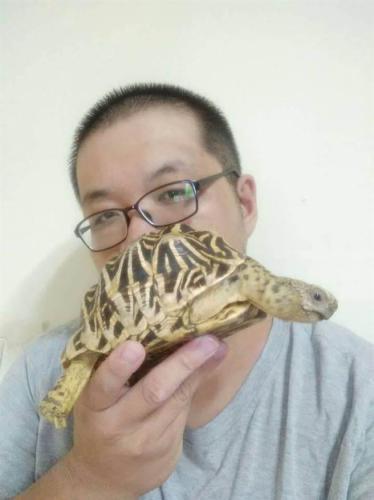 """台湾馒头师傅爱爬虫 获赞""""乌龟帝国最高统领"""" (图1)"""