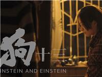 《狗十三》里的中国式家庭,是真实还是矫情?
