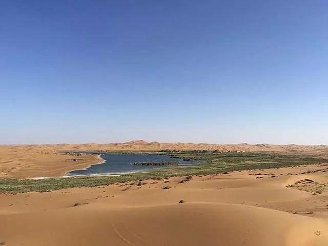 内蒙古阿拉善英雄会骆驼文化旅游节即将开幕 这个冬天在中国骆驼之乡等你