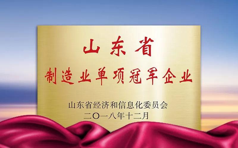 金天国际连续摘获三项省级荣誉