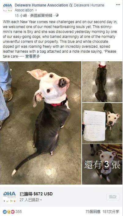 狗狗被遗弃救助站门前,身边的纸条写着:替我好好照顾它