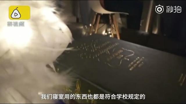 美女研究生打造仙女寝室惊动中国消防的照片 - 8