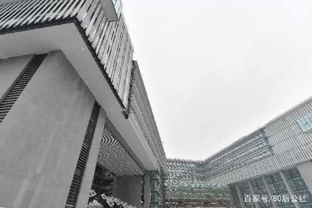 华中大富有科技元素的大楼竣工,12万平方米5亿元投资的光电大楼