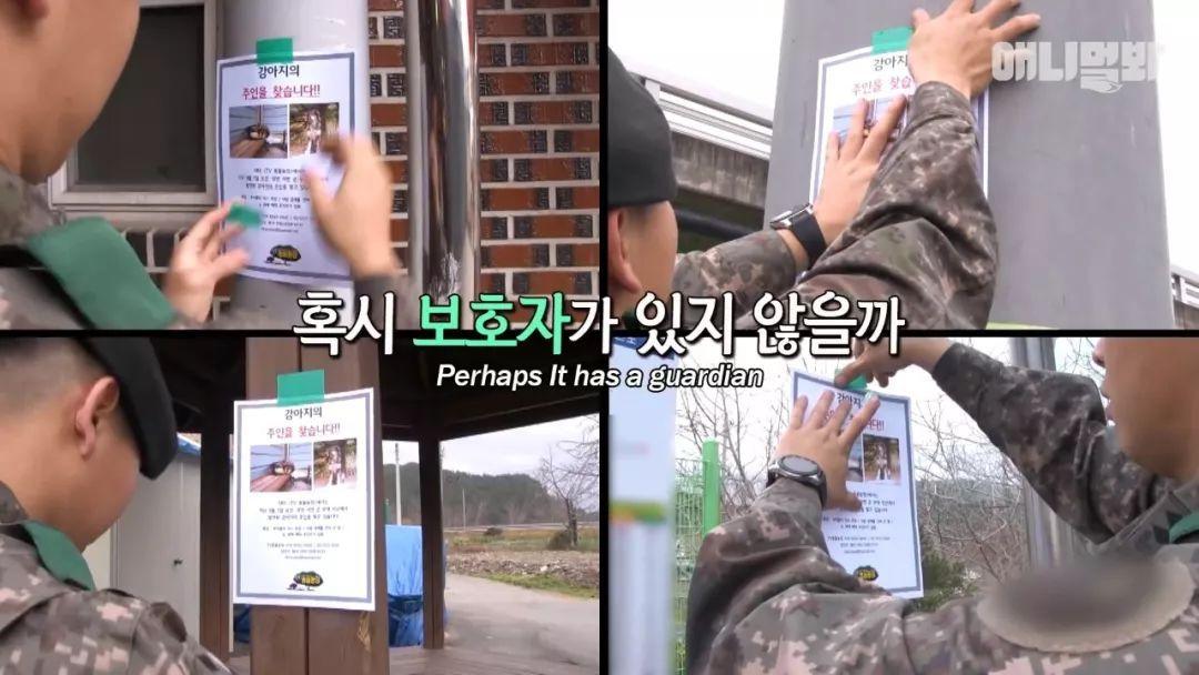 韩国一只自愿入伍的狗狗,还把部队当成了自己的家
