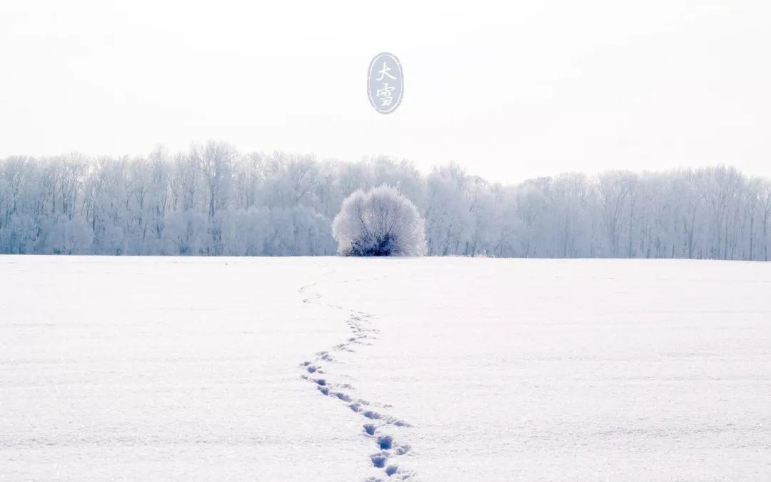 雪,是冬天的留白
