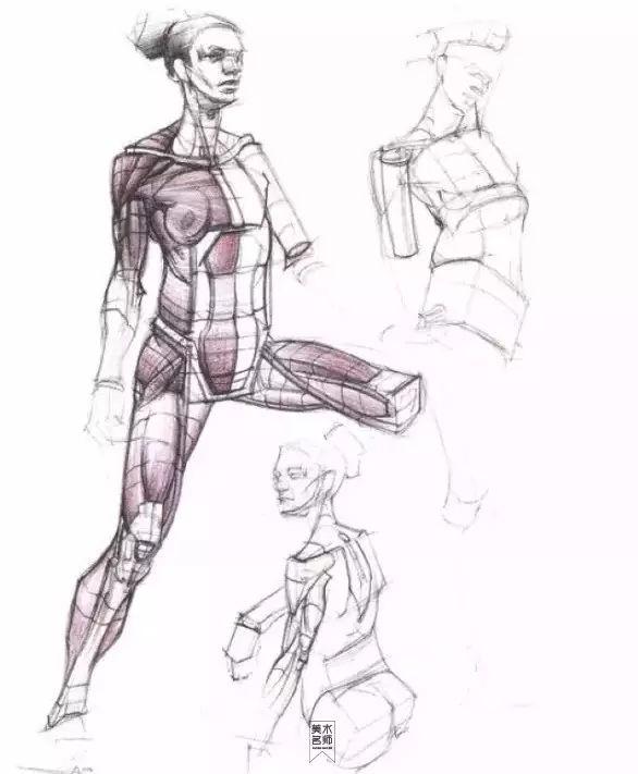 动漫人体素材大全,人体结构透视教程