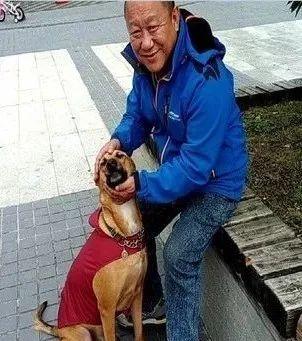 让老爸帮忙照看一下狗,嫌麻烦的老爸后来不想归还了