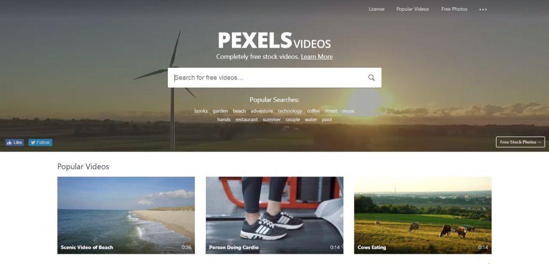 pexels 免费视频