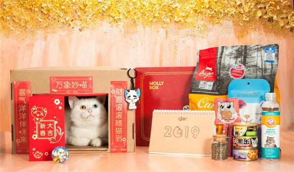 宠物行业跨界文创新势力,MollyBox魔力猫盒开启养宠消费新主张